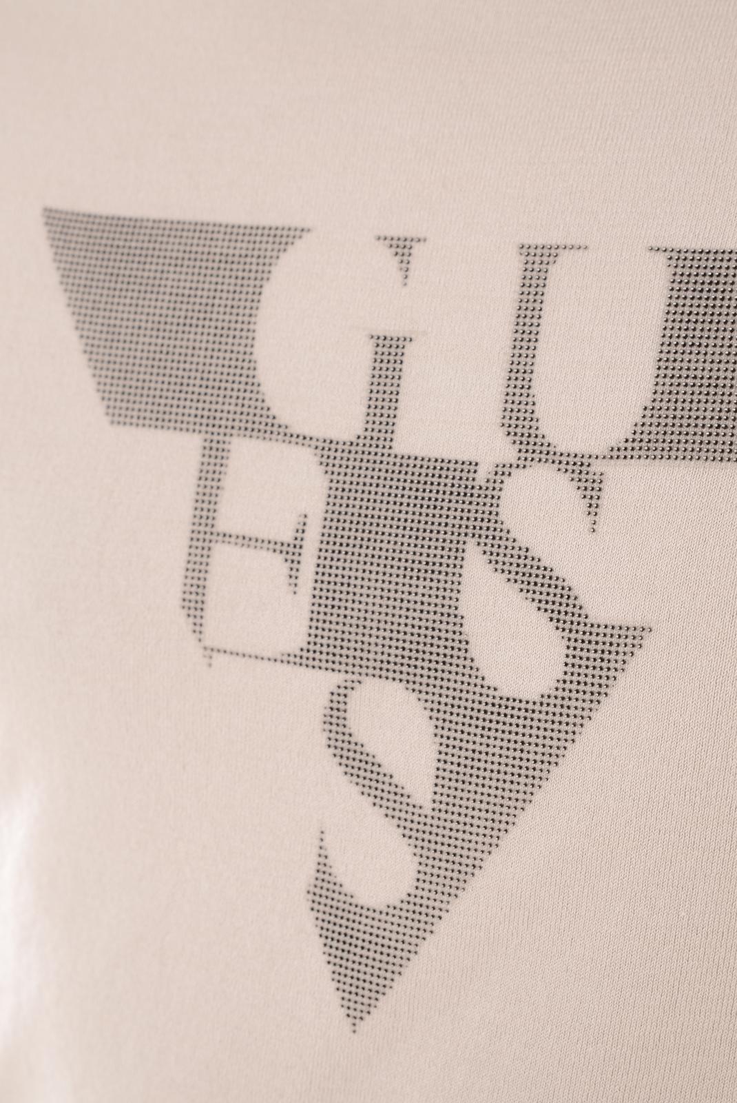 Pulls & Gilets  Guess jeans M61R01Z05R0 B931 BEIGE