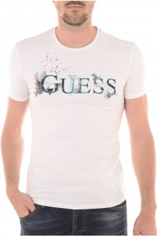 M54I53J1311 - HOMME GUESS