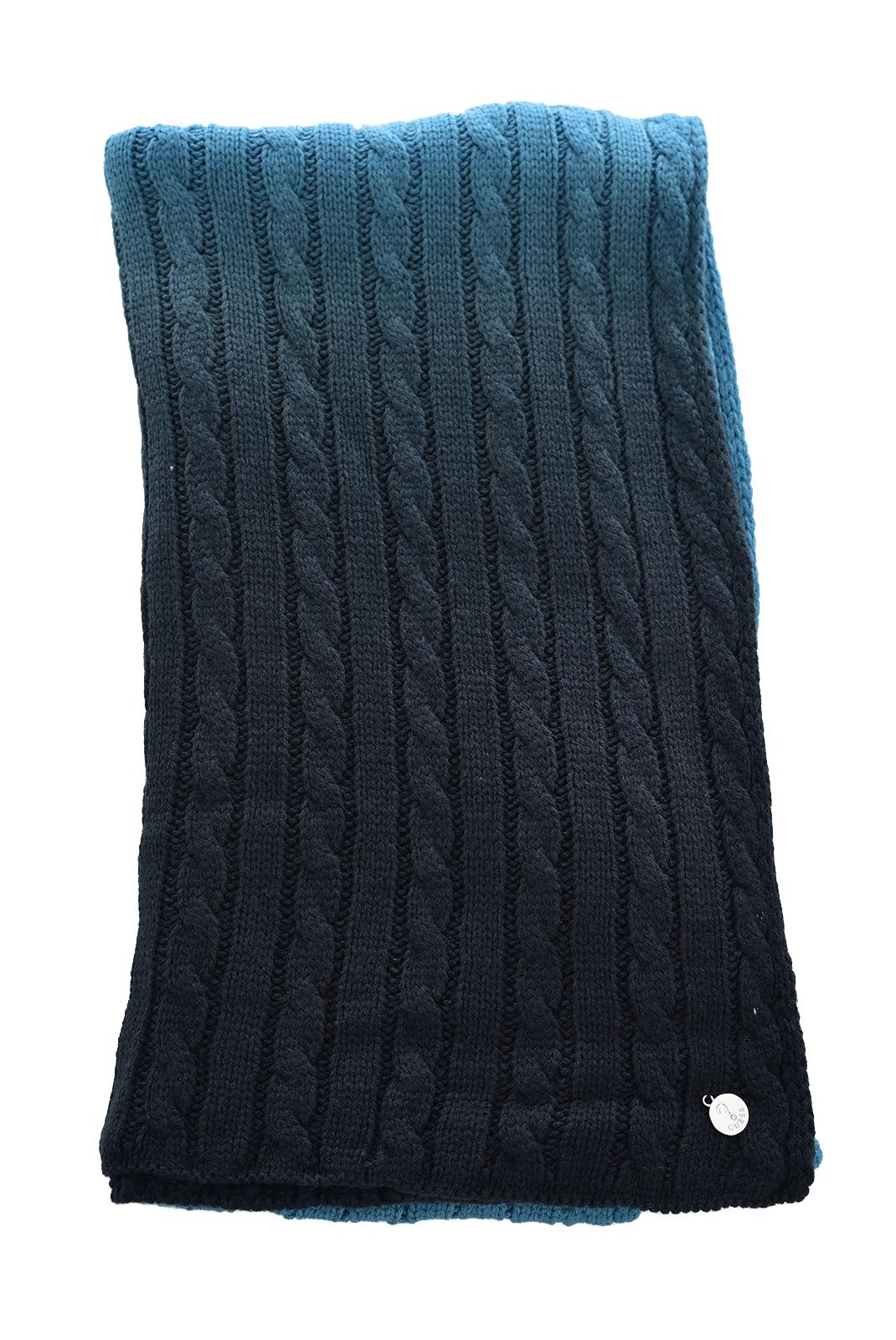 Echarpe, Foulard  Guess jeans AW6409WOL03 BLUE