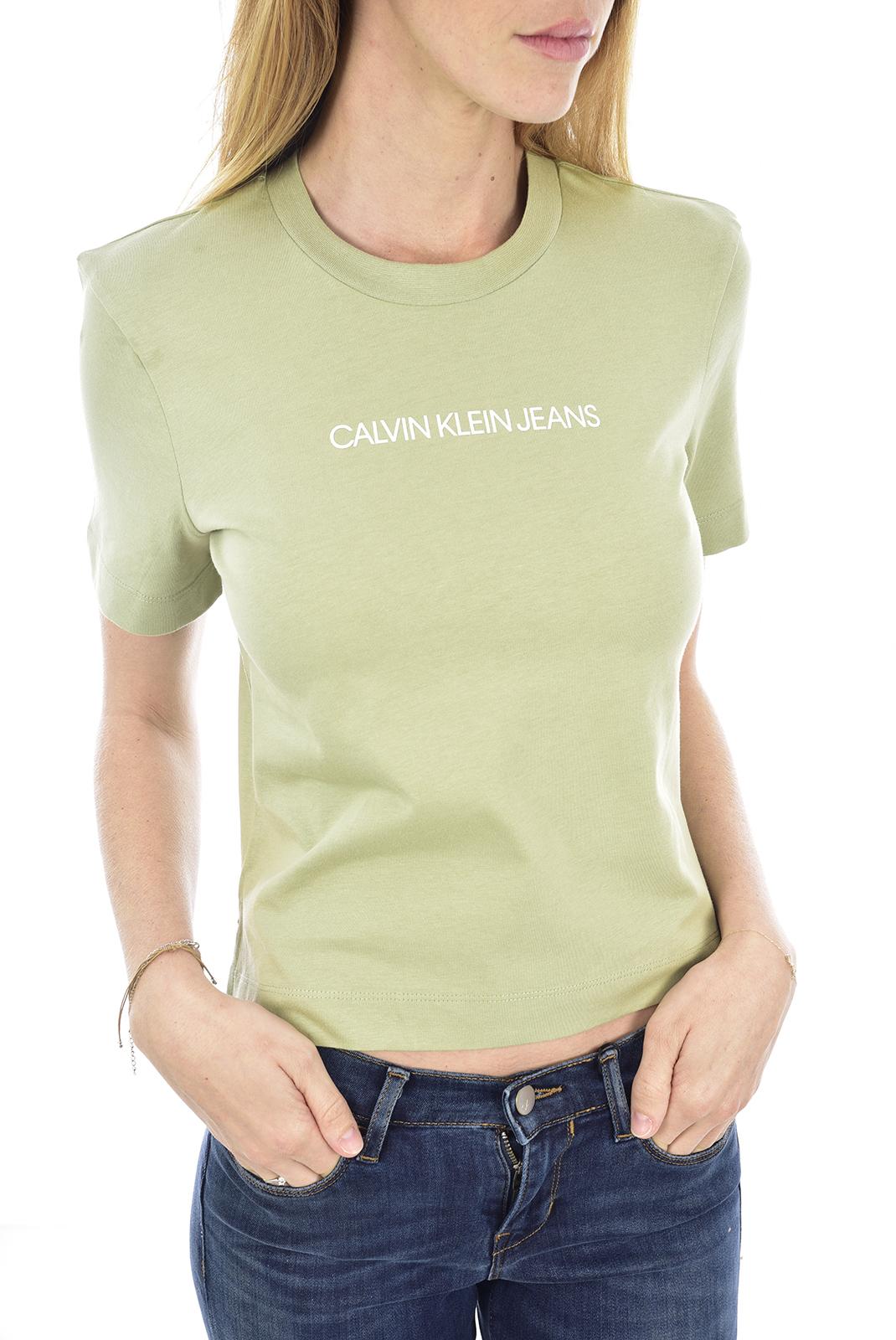 Tee shirt  Calvin klein J20J212879 L9A EARTH SAGE