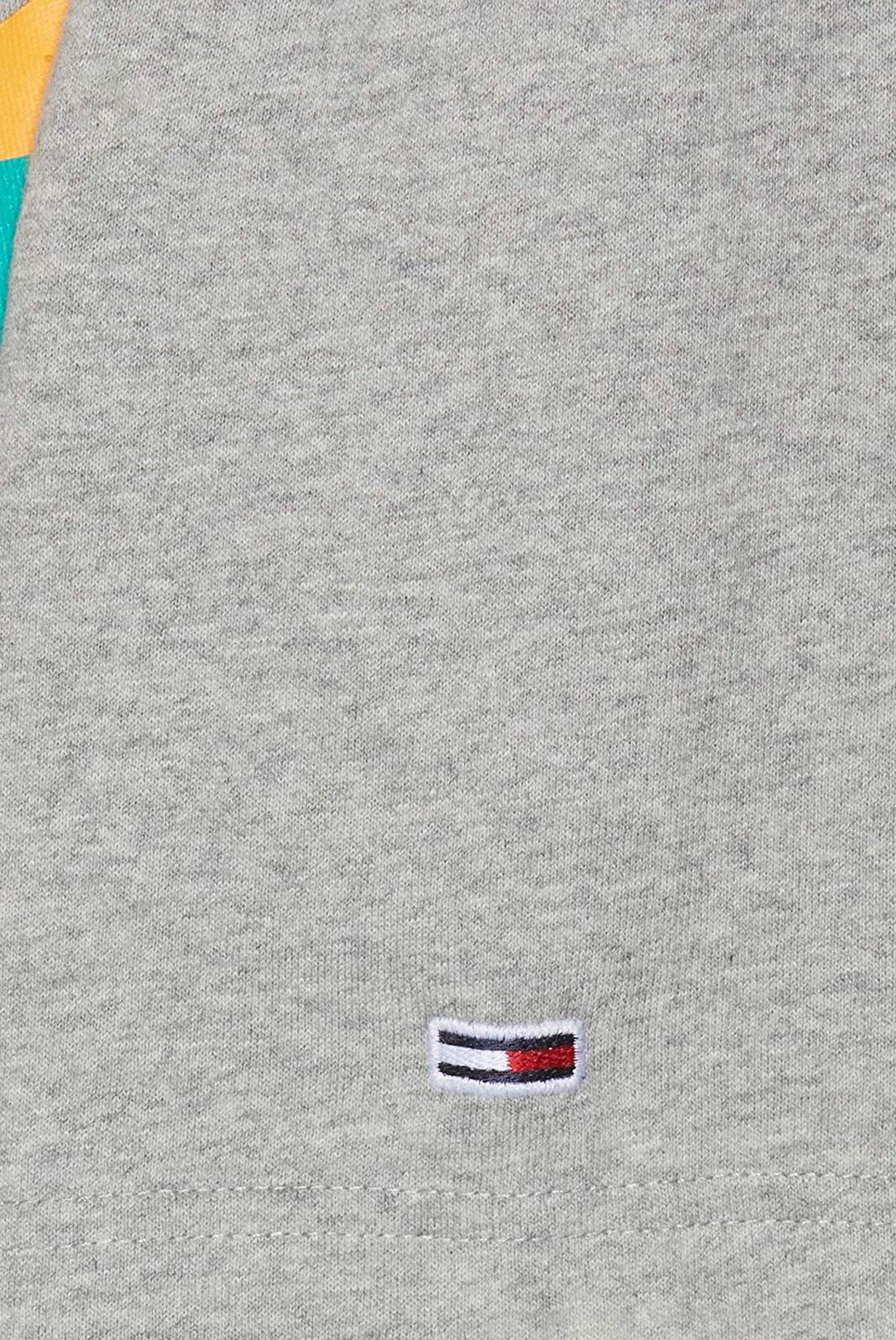 T-S manches courtes  Tommy Jeans DM06079 RAINBOW 038 Lt grey htr