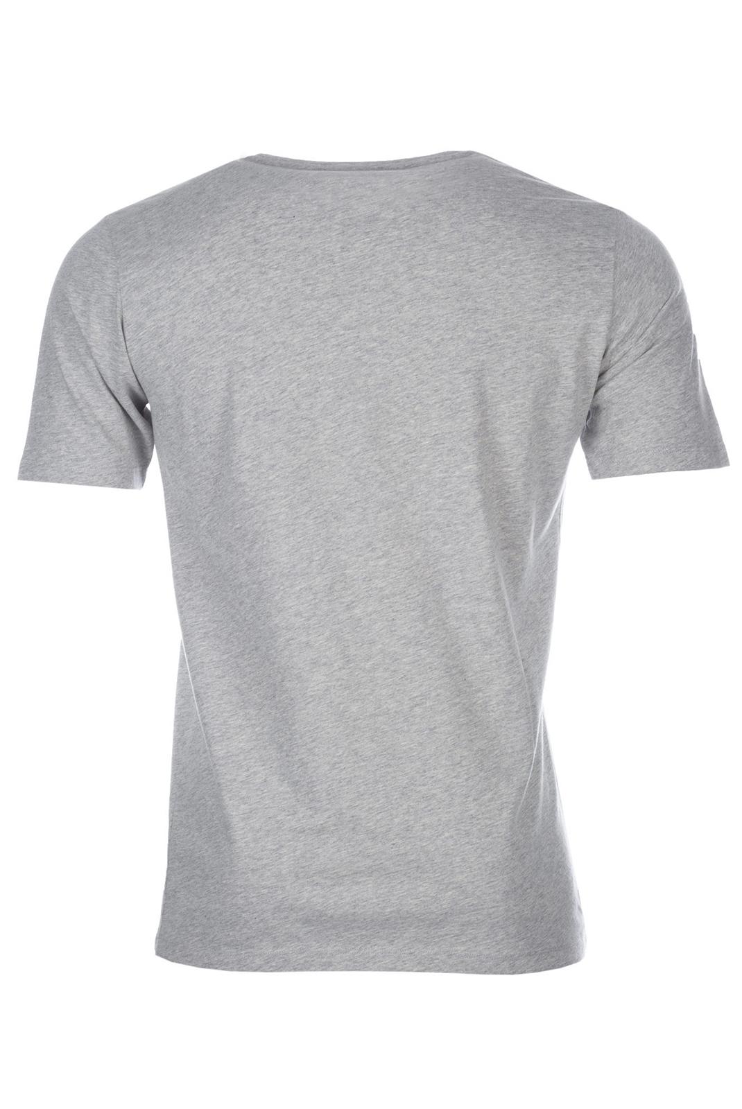 Tee-shirts  Diesel OOAJRB WEBMARWA 912 GRIS
