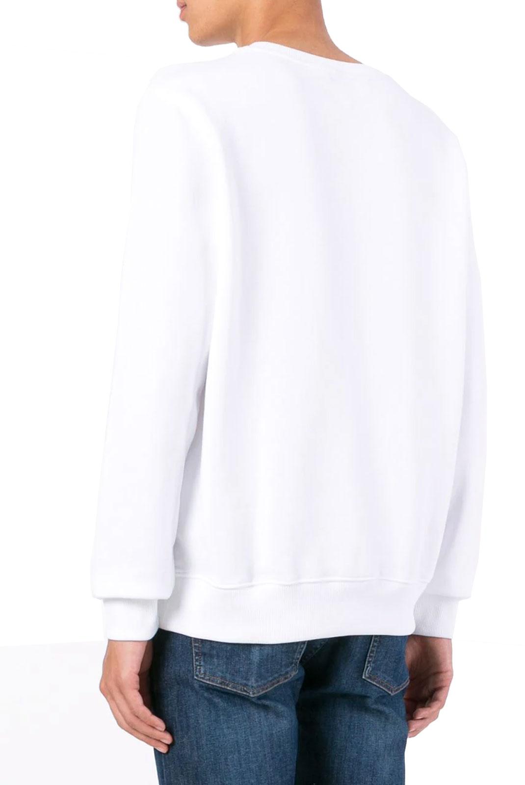 Sweatshirts  Tommy Jeans DM0DM01657100 100 CLASSIC WHITE