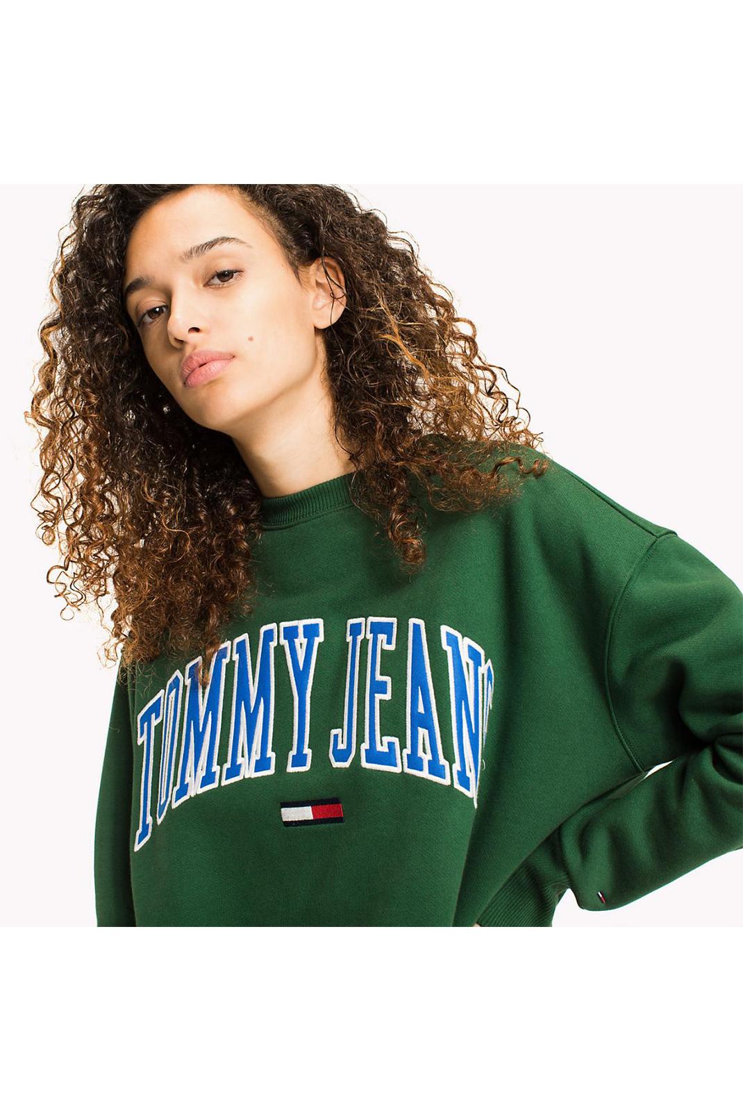 Sweat / sweat zippé  Tommy Jeans DW0DW04823386 386 EDEN